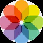 Brand Management icon